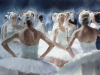 anna-ivanova-swans-behind-the-scene-42x56